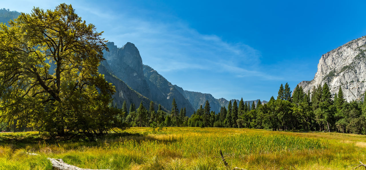 Beauty In Nature Day Grass Landscape Mountain Nature No People Outdoors Scenics Sky Tranquil Scene Tranquility Tree