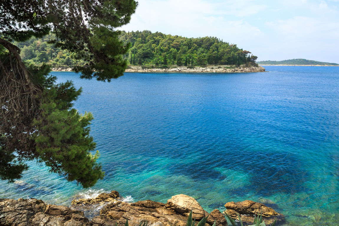 Emerald, aquamarine and turquoise coast of Croatia in Cavtat Adriatic Sea Beautiful Beautiful Sea Cavtat  Cliff Croatia Croatian Emerald Europe Family Vacation Green Holiday Luxury Nature Panorama Path Pine Tree Sea Summer Travel Travel Destinations Turquoise Vacation Water