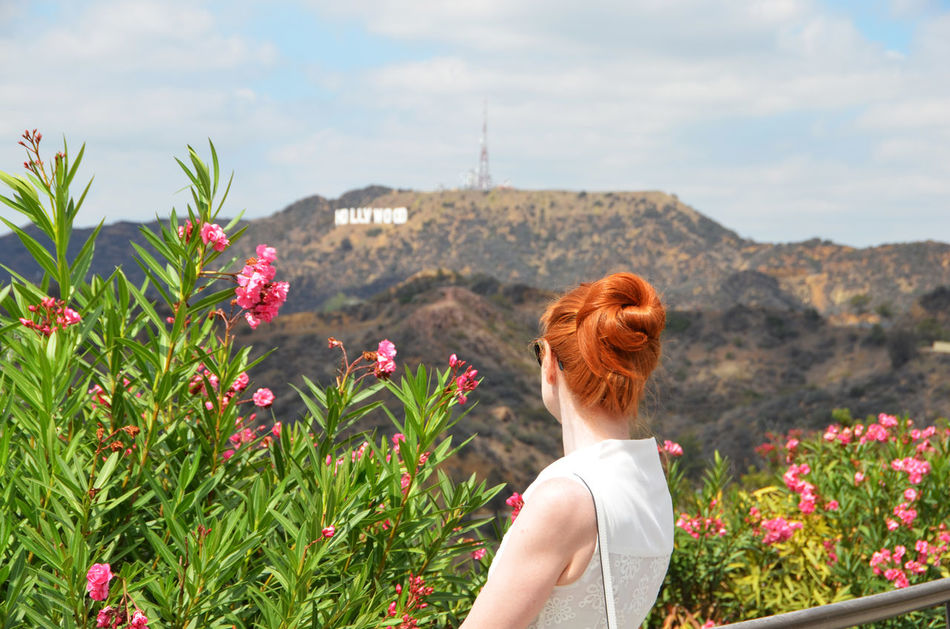 Beautiful stock photos of hollywood, 35-39 Years, Beauty In Nature, Blooming, Brown Hair