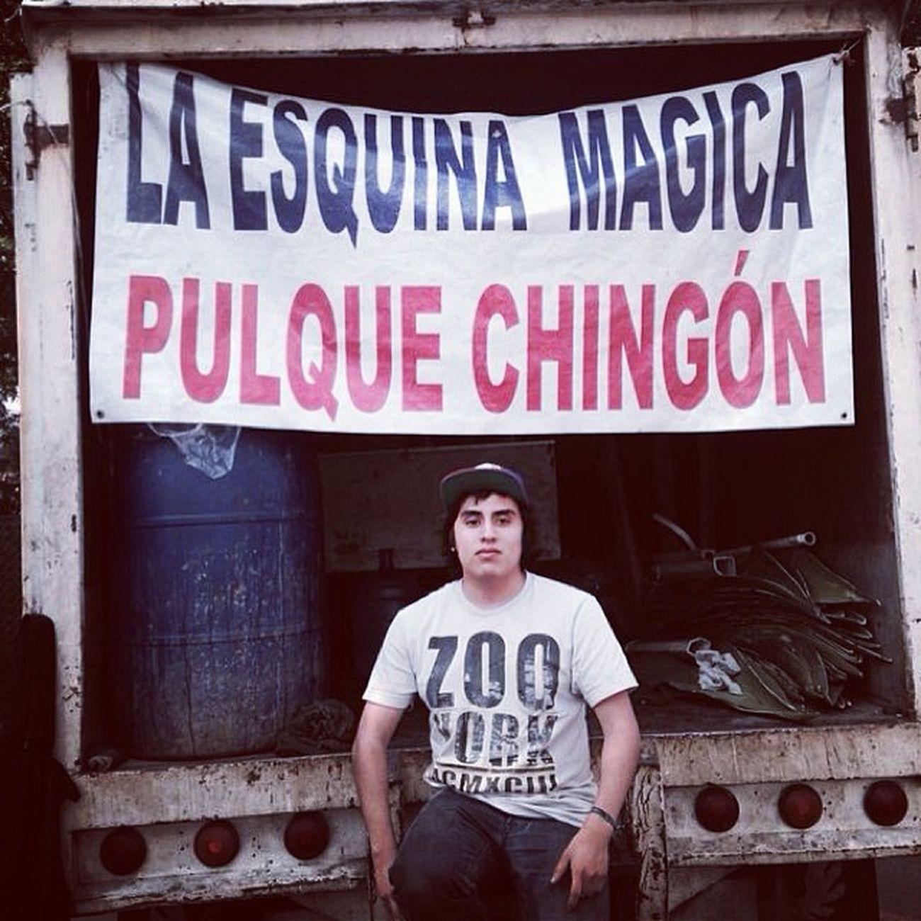 Laesquinamagica PULQUE Pulques Mexico drink maguey chingon rayado skateboard zooyork ny empezandobieneldia