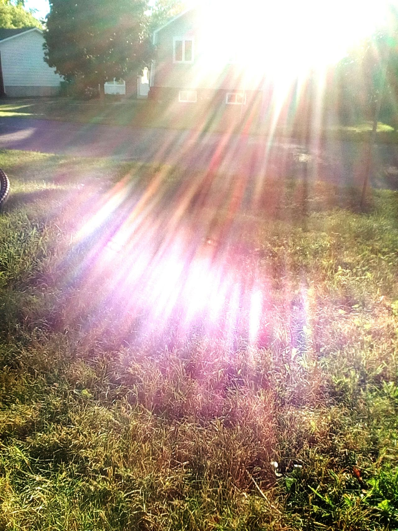 Daytime Nice Sunshine
