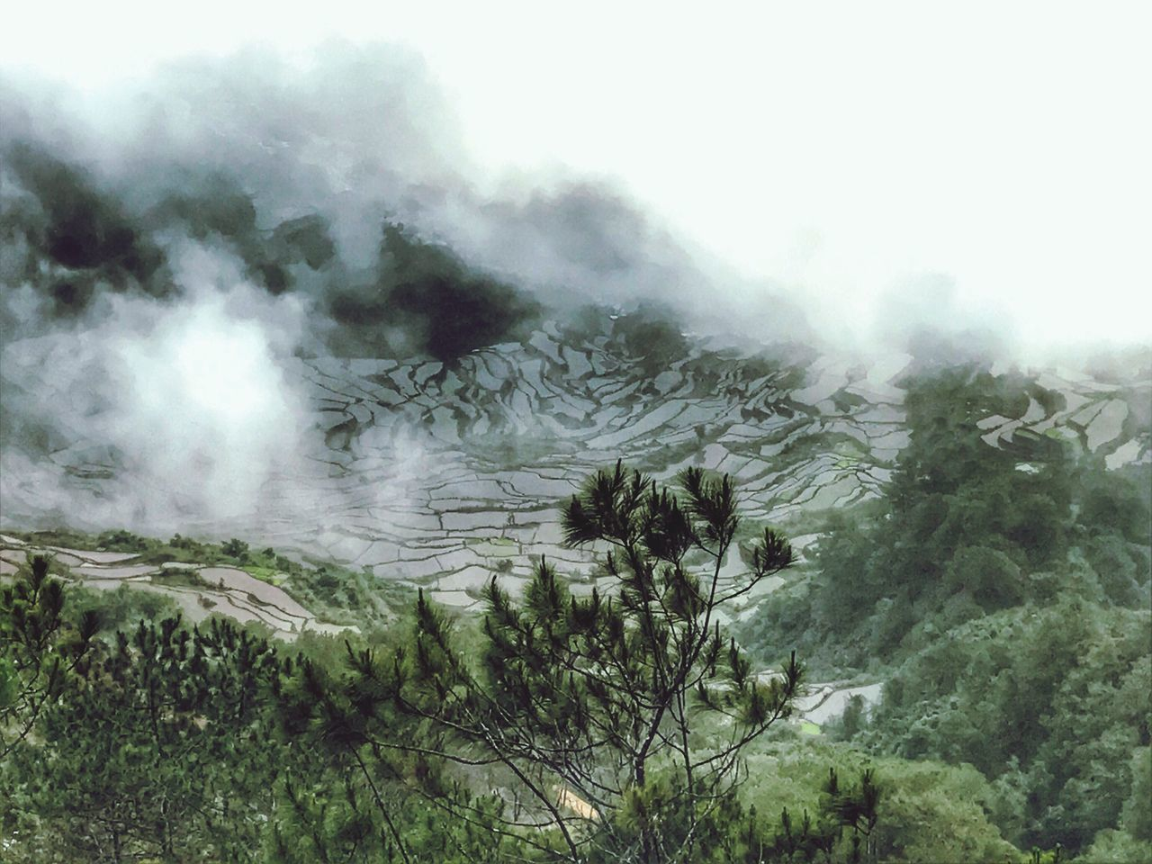 Flying High rice fields of Sagada, Philippines Nature Smoke - Physical Structure Outdoors