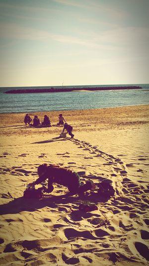 Suivez moi... Enjoying The Sun Sandcastles