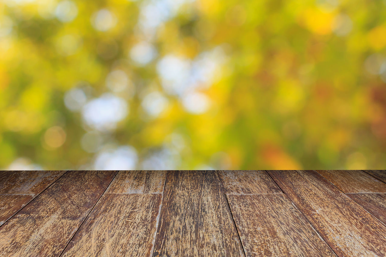 wood - material, no people, outdoors, day, close-up, nature, yellow, tree, beauty in nature