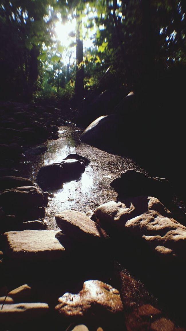 Water Creek Chillspot