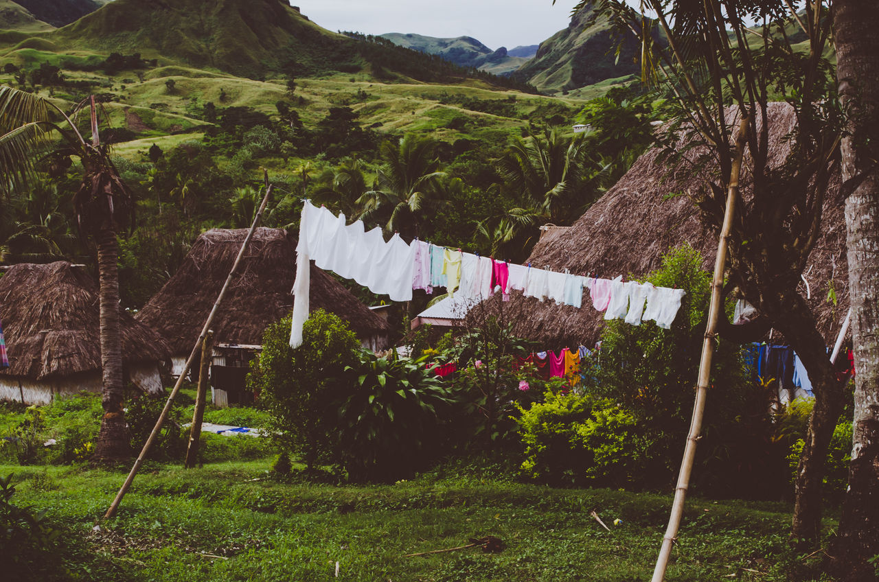 New life Beauty In Nature Bure Clothesline Clothespin Day Drying Fiji Grass Hanging Hut Laundry Mountain Nature Navala Village No People Outdoors Plant Tree The Great Outdoors - 2017 EyeEm Awards