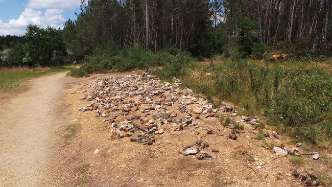 Camino CaminodeSantiago El Camino Jakobsweg Pilgern Pilgrimage Road Track Way Way Of Saint James Weg Steine Stones