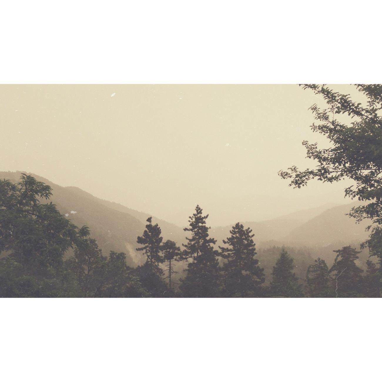 Nature Landscape AMPt_community Nature_collection