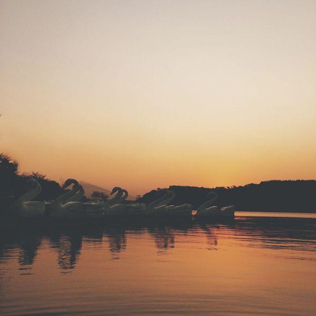 Que a felicidade vire rotina !! - Beautiful Day Sunset_collection Sunset EyeEmBestPics EyeEm Best Shots OpenEdit EyeEm Gallery EyeEm Best Edits EyeEmBestEdits EyeEm Nature Lover