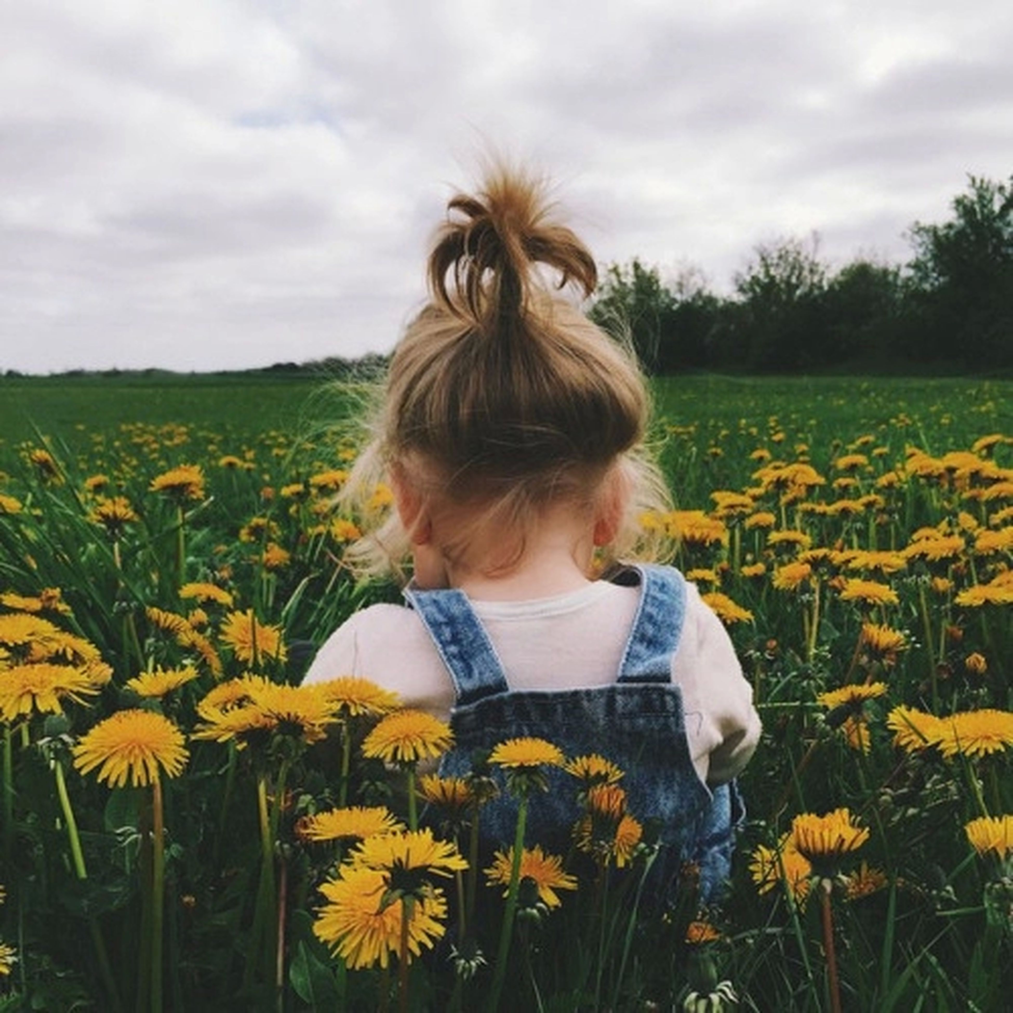 flower, field, sky, beauty in nature, landscape, leisure activity, rural scene, agriculture, fragility, nature, lifestyles, person, growth, long hair, cloud - sky, yellow, rear view, freshness