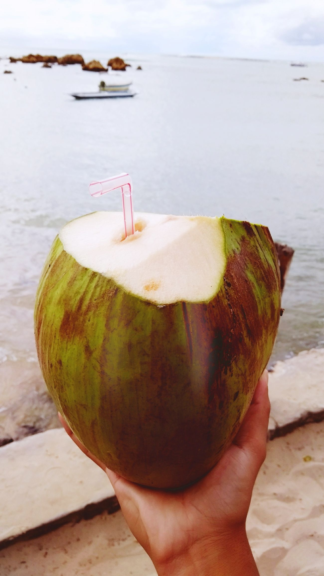 Fruit Food And Drink Coconut Day Nature Sky Freshness Beach Water