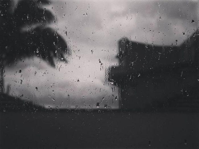 Chuva de hoje ^^ Teatrocarlosgomes Blumenau Brasil Brazilgram_ Vscocam Vscobrasil Vscophotos Vscofotografia_ Blackandwhite MinhaCidade Chuvadeverao Amoblumenau Desafiodasfotos Useimeusolhosmagicos Paraisoempixels Paraisodasimagens