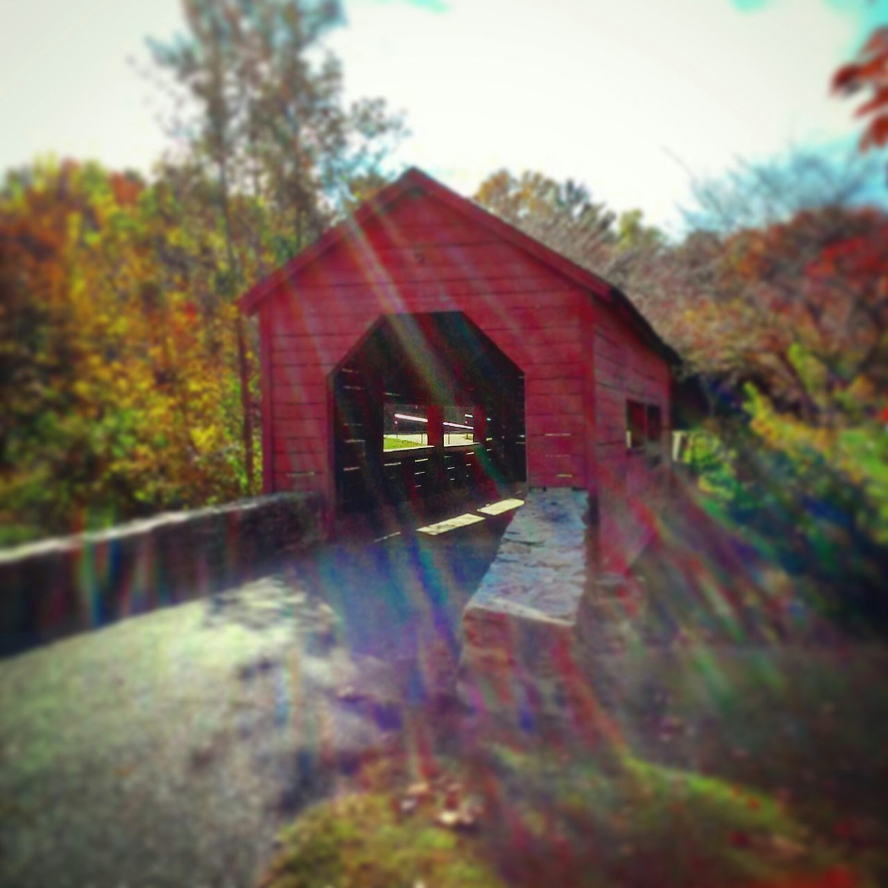 Red Bridge On Sunny Day