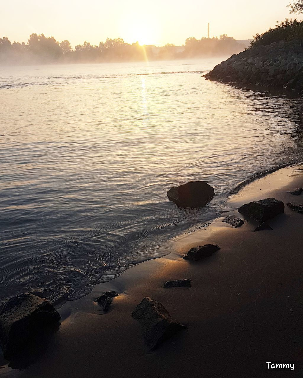 sunset, water, nature, beauty in nature, tranquility, scenics, sun, tranquil scene, outdoors, rock - object, sky, no people, sunlight, sea, beach, tree, day