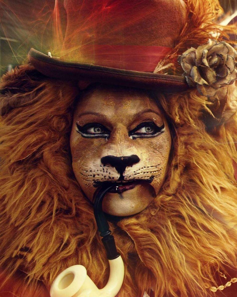 Lions Lioness Bristol Fancy Dress Animal Themes