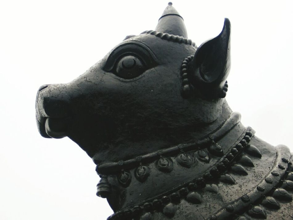 Statue Sculpture Place Of Worship No People Close-up Outdoors Nandi Temple Hindu Temple