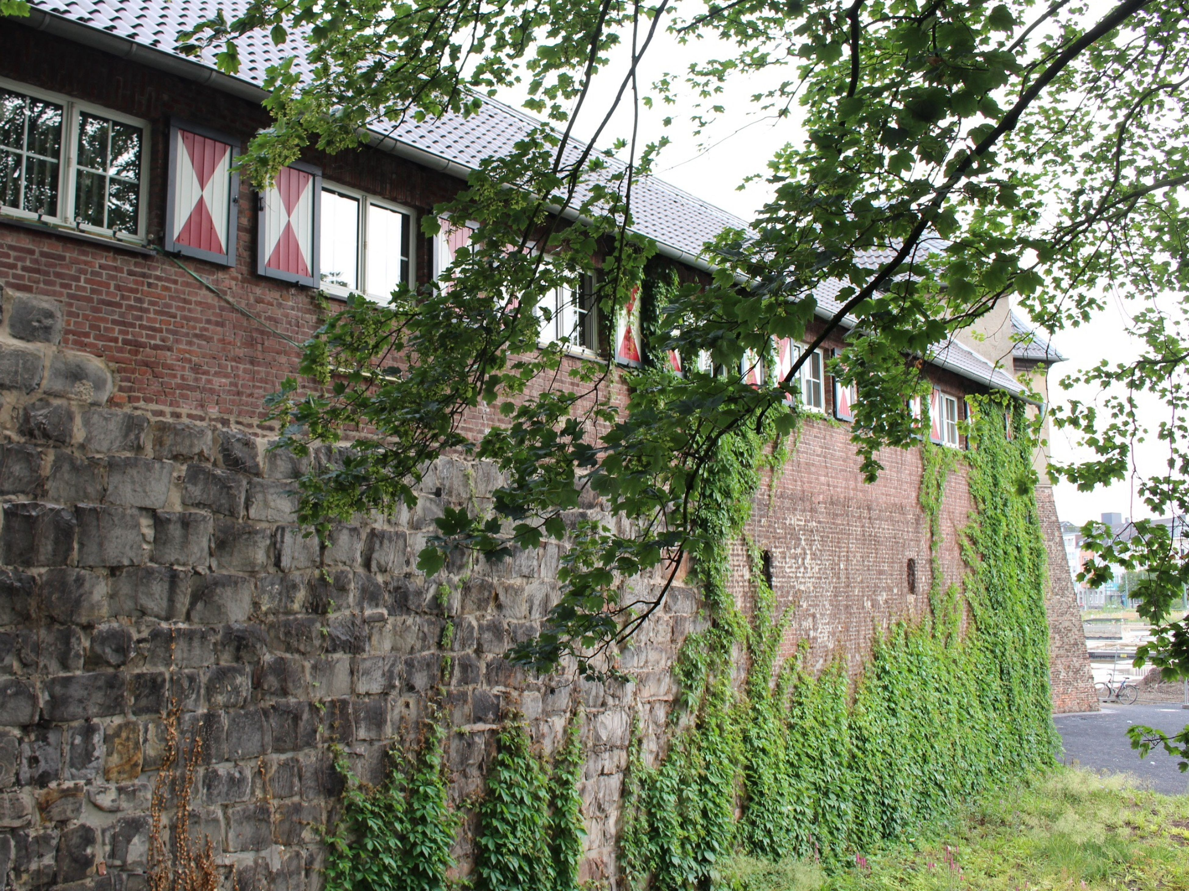 architecture, built structure, building exterior, house, tree, plant, old, abandoned, residential structure, growth, ivy, weathered, stone wall, residential building, damaged, day, wall - building feature, obsolete, run-down, low angle view