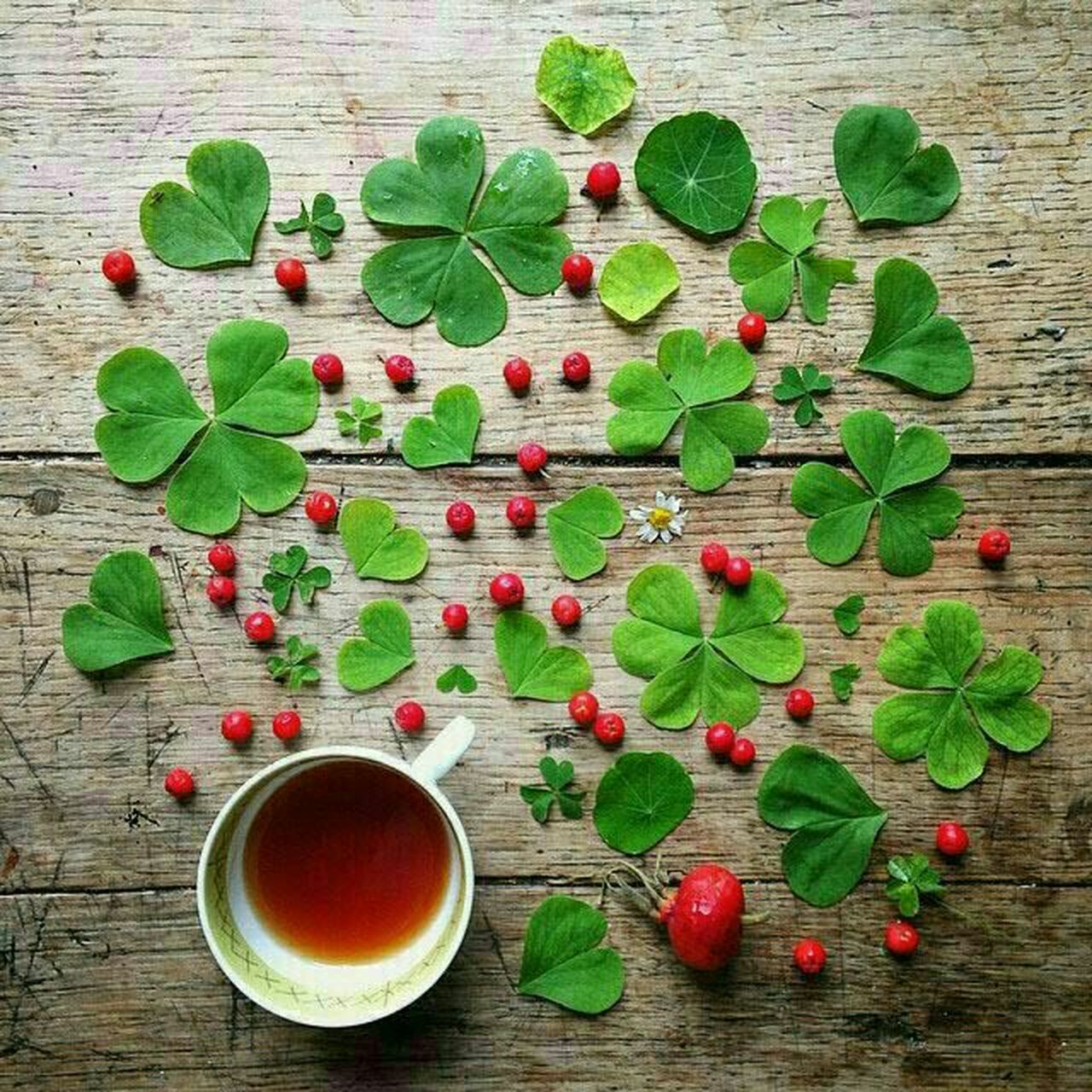 food and drink, leaf, freshness, healthy eating, fruit, drink, wood - material, green color, food, table, no people, refreshment, indoors, red, directly above, plant, tea - hot drink, branch, flower, day, close-up, nature, ready-to-eat