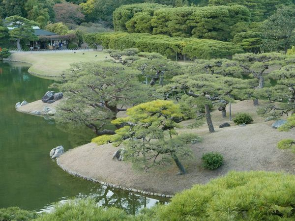 Ritsurin Gardens... Japanese Garden Japan Ritsurin Garden Takamatsu Check This Out The Traveler - 2015 EyeEm Awards The Places I've Been Today The Purist (no Edit, No Filter) EyeEm Best Shots - Nature