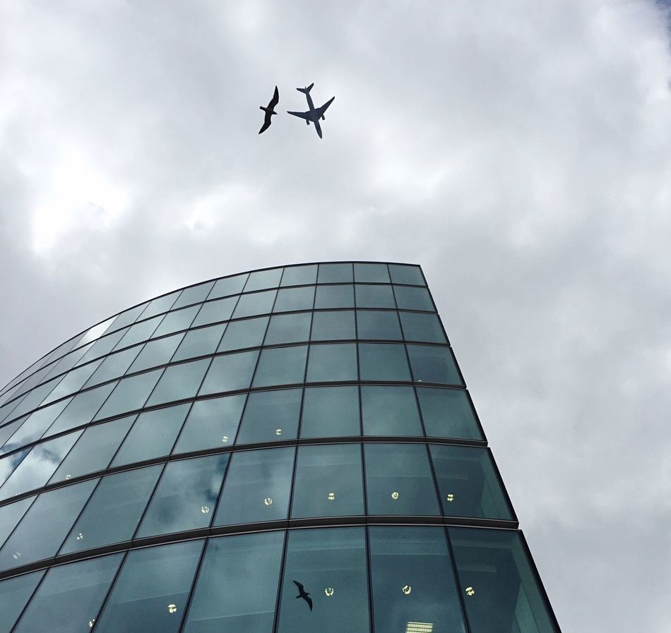 Taking this picture was a mere coincidence. This is London, City hall. The picture was taken with iPhone 6, no photoshop applied. First you may wonder why the airplane is not reflected, it is because it is much higher and its reflection could be observed earlier. City Hall Bird Bird And Airplane Photos EyeEm Best Shots EyeEmNewHere Coincidencetography Coincidence Lucky Luckyshot Sizes Amazingphotohunter Travel Travelling Architecture Building Exterior Sky No People Modern Outdoors Nophotoshop Skyscraper City Adapted To The City Adapted To The City