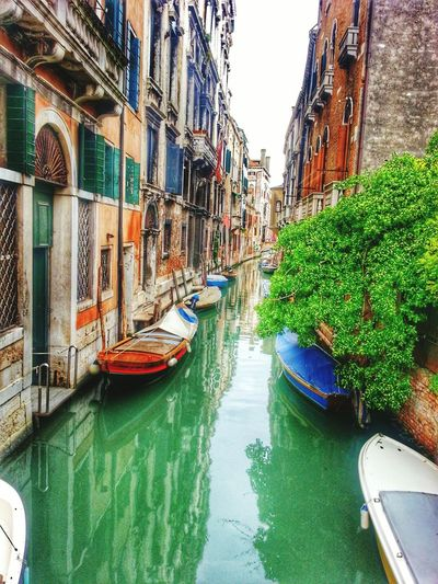 Italy two years ago, great memoriesNature Summer City Italia Venedig Venedig Gondeln Venecia Beautiful Memory Memories Littlethingsinlife Welcome To My World Pointofview