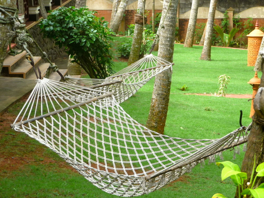 Relaxing moments in a hammock Enjoying The Sun Hammock Hammock Time Hammocking Hammocks Hammocktime Outdoors Palm Trees Palms Quality Time Recreation  Relax Relax Time  Relaxation Relaxing Summertime Time For Me Time To Reflect Timeout Tree Tree Trunk Relaxing Time Relaxing Moments The Essence Of Summer Summer ☀
