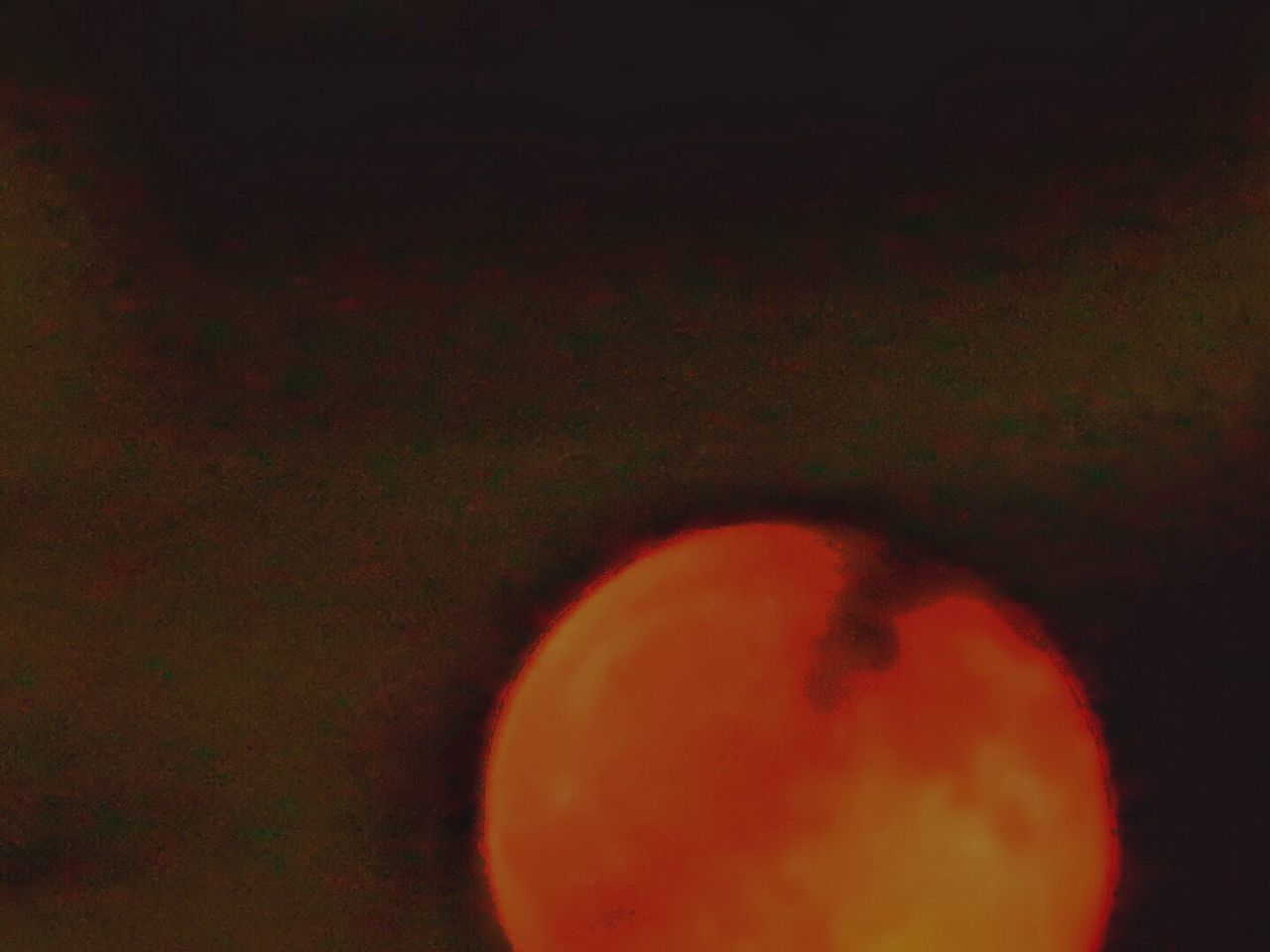 food and drink, fruit, healthy eating, no people, freshness, food, indoors, close-up, nature, blood orange, astronomy, day