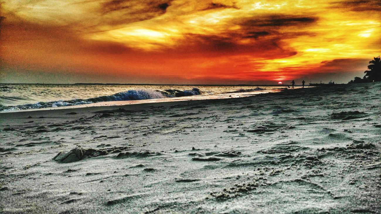Sunset Nature Worldwide_shot Beach Taking Photos Eye Em Around The World First Eyeem Photo Relaxing GadgetPhotography Hanging Out Hanging Out Enjoying Life Naturephotography EyeEm Indonesia Gadgetgrapher_kaltim INDONESIA Gadgetlicious Gadgetgrapher Taking Photos Enjoying Life Sunset
