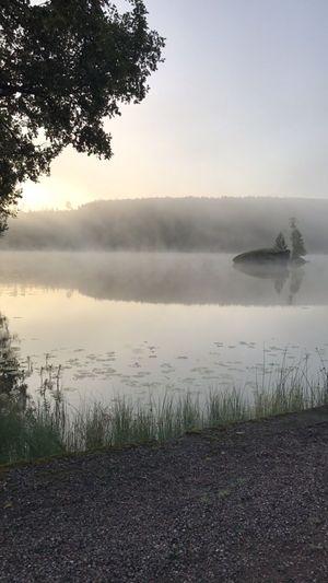 Water Lake Nature Beauty In Nature Idyllic Tree Sky Reflection No People Landscape