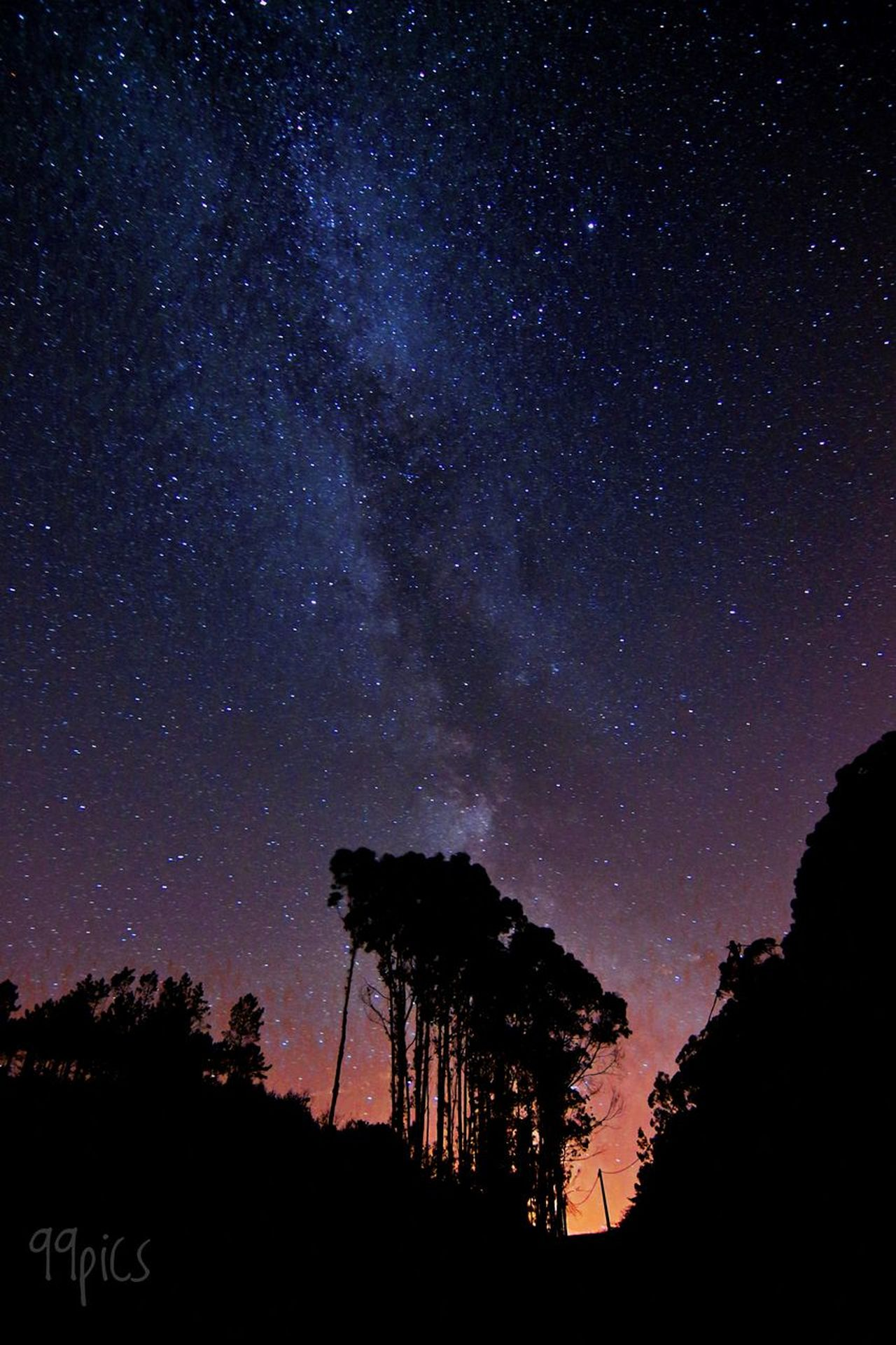 Fuegos artificiales. Star - Space Silhouette Astronomy Low Angle View Night Tranquility Sky Nature Beauty In Nature No People Tree Scenics Outdoors Galaxy Milky Way Constellation Space Light - Natural Phenomenon Nocturna Simple Moment Via Lactea