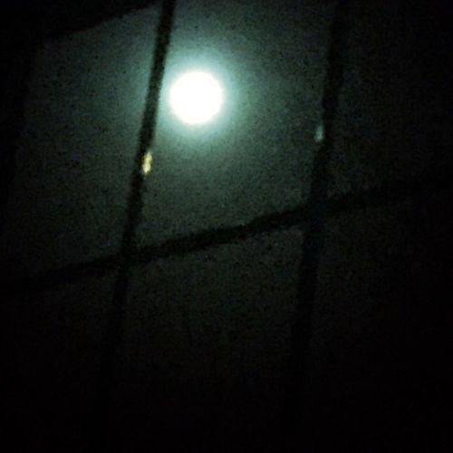 Goodnight Moon Nursery Rhyme Photographic Memory Showcase: January Winter