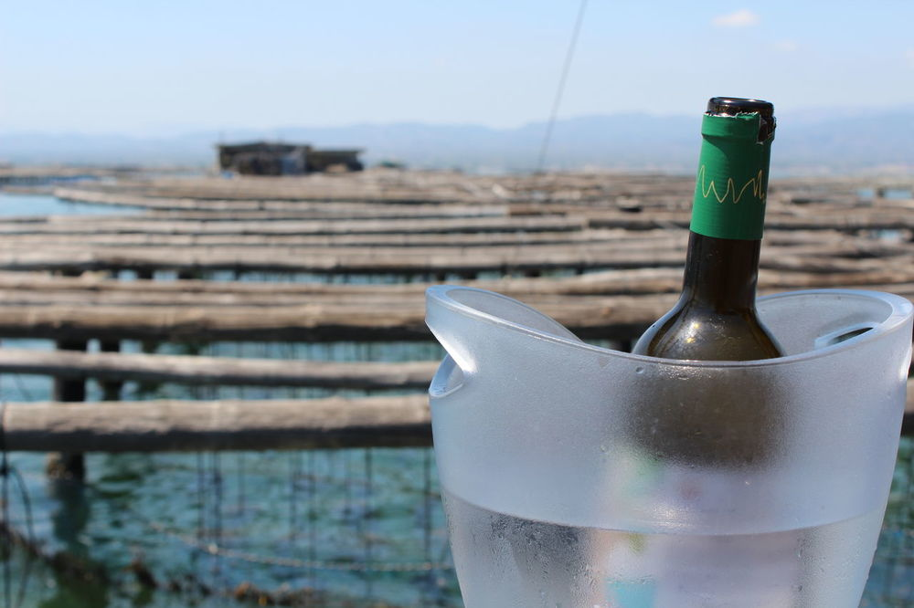 Bottle Close-up Focus On Foreground Water No People Day Sky Ink Outdoors Freshness Delta De L'Ebre Mar Ostras Vino Barça Mejillones Cultivo Medio Ambiente Raconets
