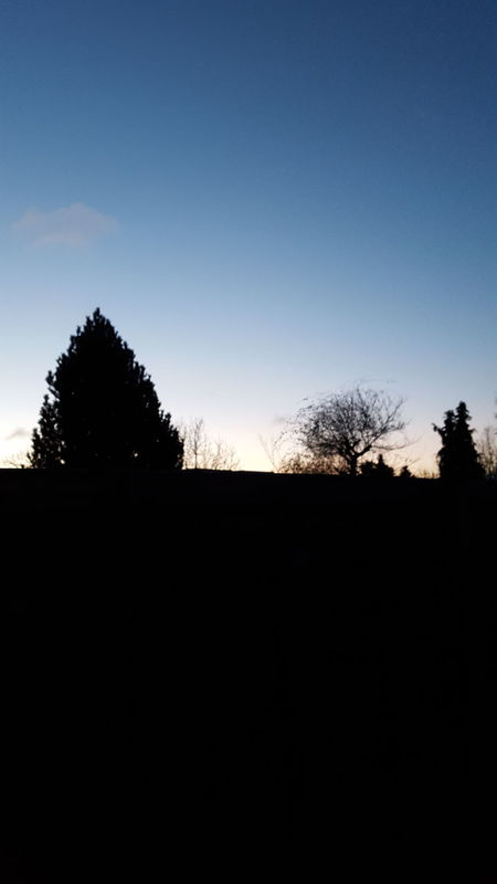 Nofilter#noedit Blue Sky The Trees Darkness And Light Early Morning Freezing Cold
