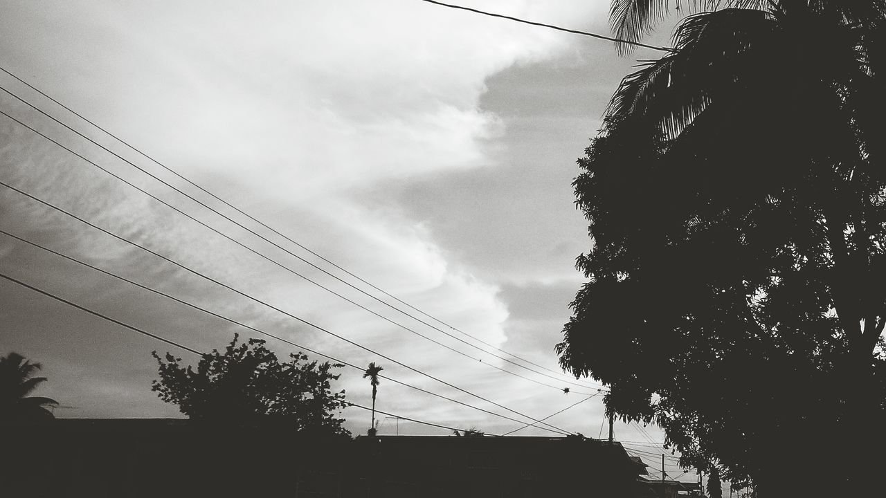 5mpcamera BluStudio5+5 PhonePhotography Black And White Photography EyeEm Best Shots - Black + White Buildings Buildings & Sky Peaceandquiet Eyemphotography EyeEmBestPicsPeaceandtranquilty EyeEm Best Shots EyeEm Best Edits Power Lines Coconut Trees Blackandwhite