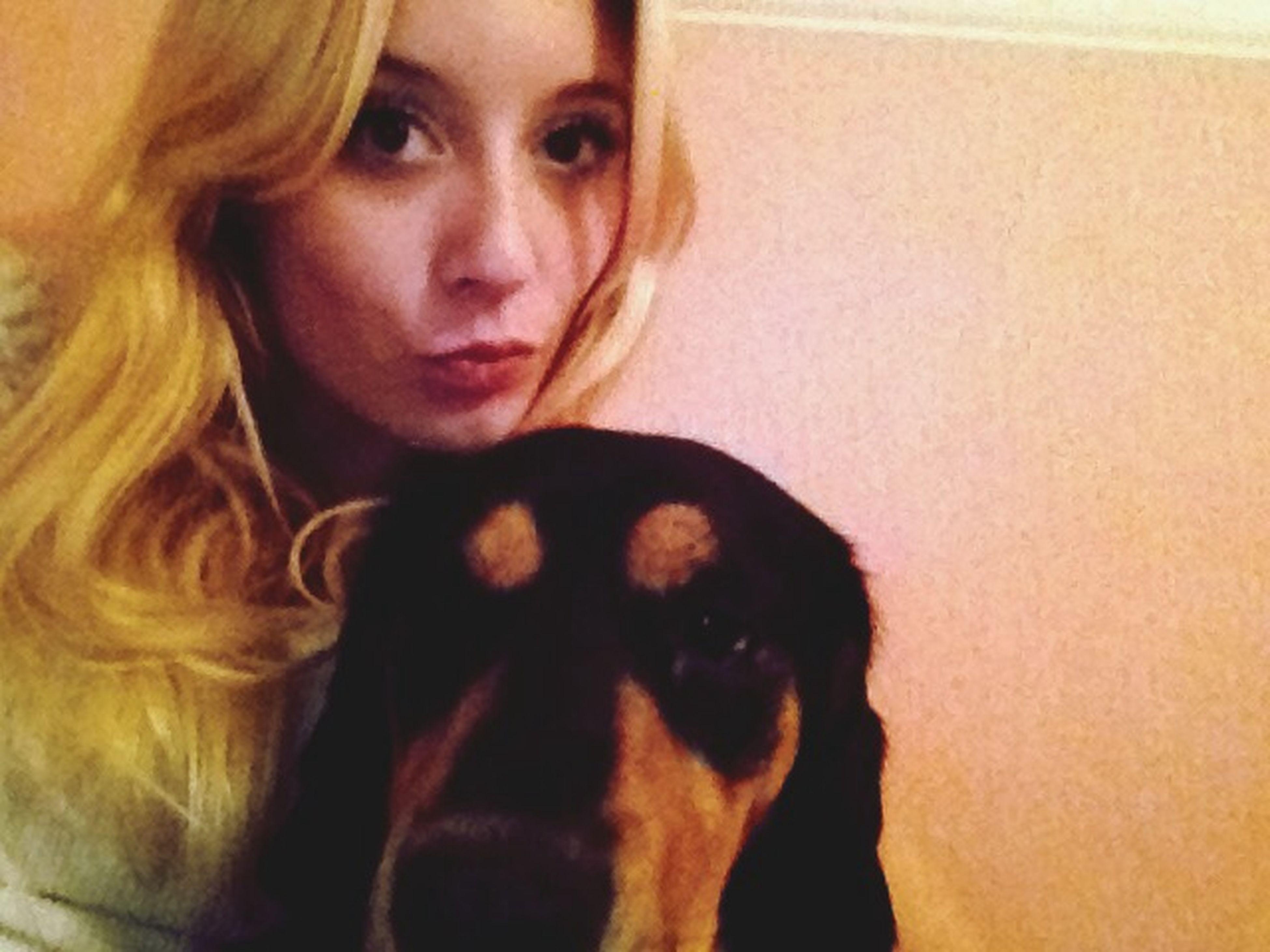 Mon chien est le roi Dog I Love My Dog Pets