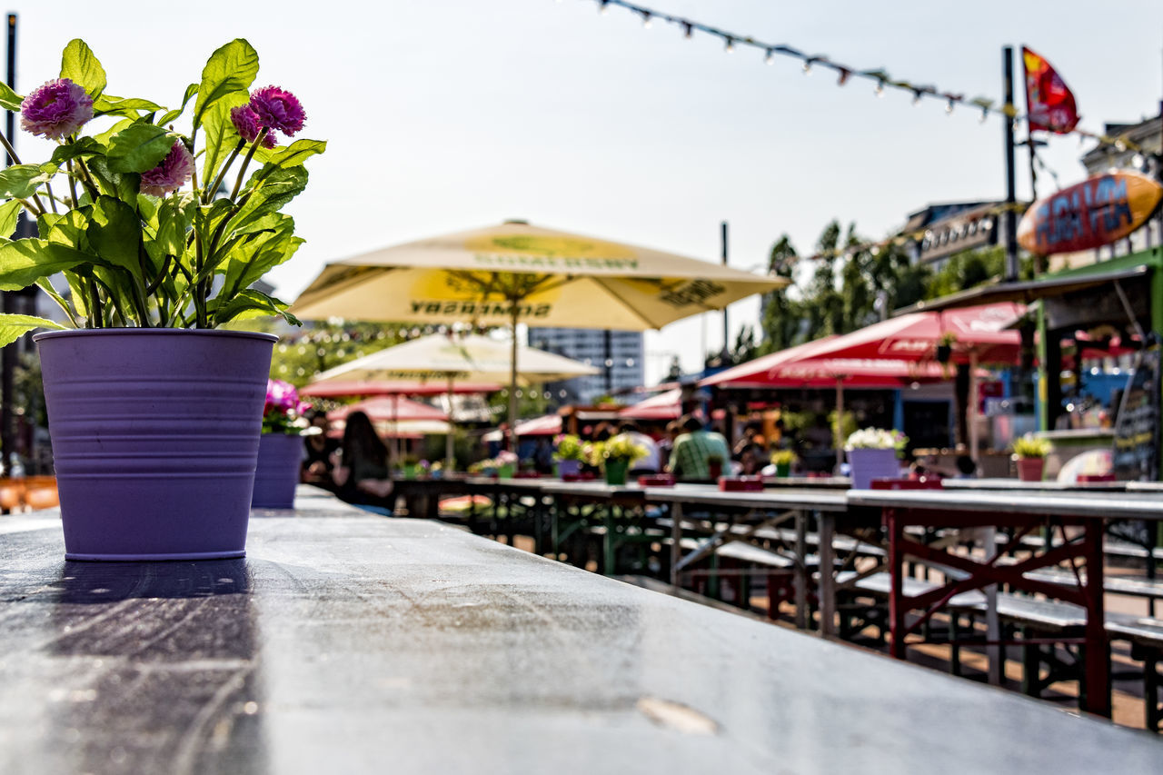 Spielbudenplatz Banks Day Flowers Hamburg Outdoors People Watching Potted Plant Reeperbahn  Tables Yellow Parasols