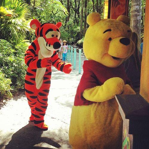 Tigger and pooh! Uptonogood Partnersincrime
