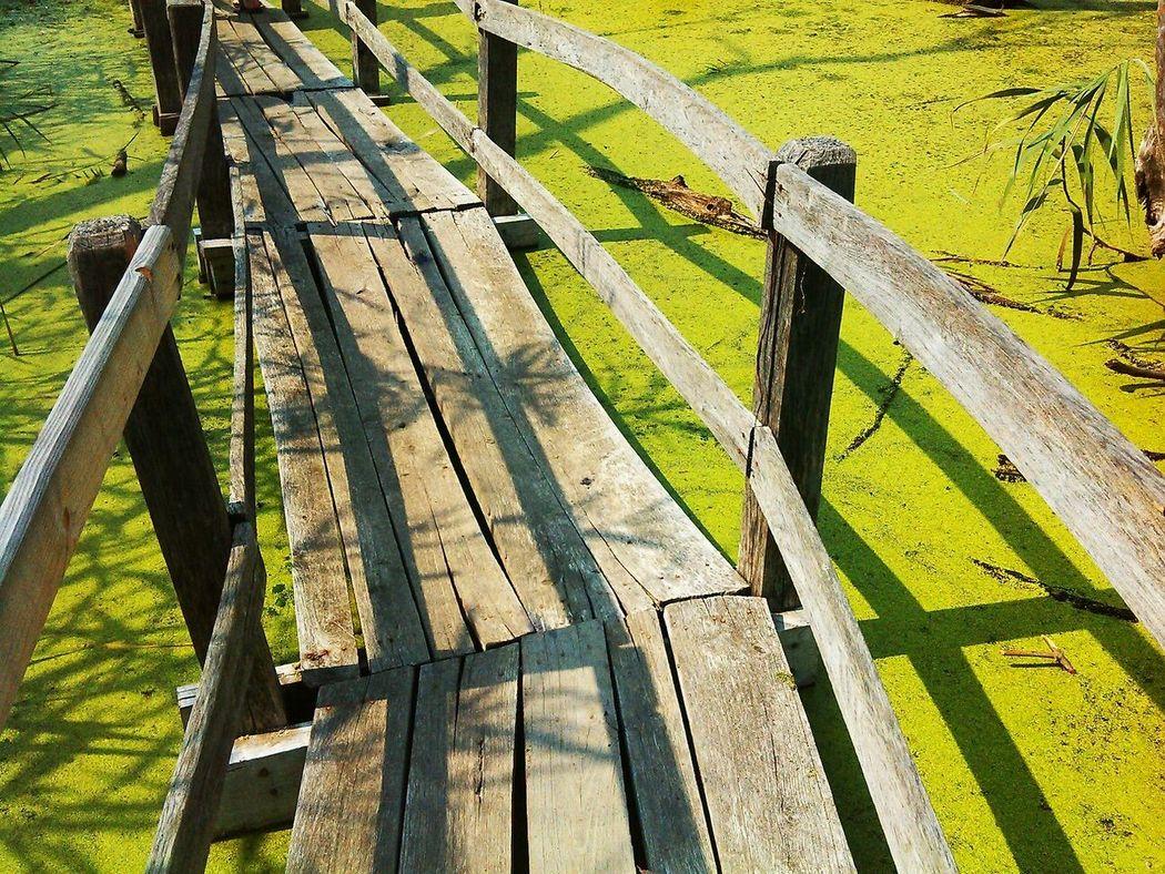 Bridge Green EyeEm Nature Lover Eyeem Hungary PhonePhotography Relaxing Capture The Moment