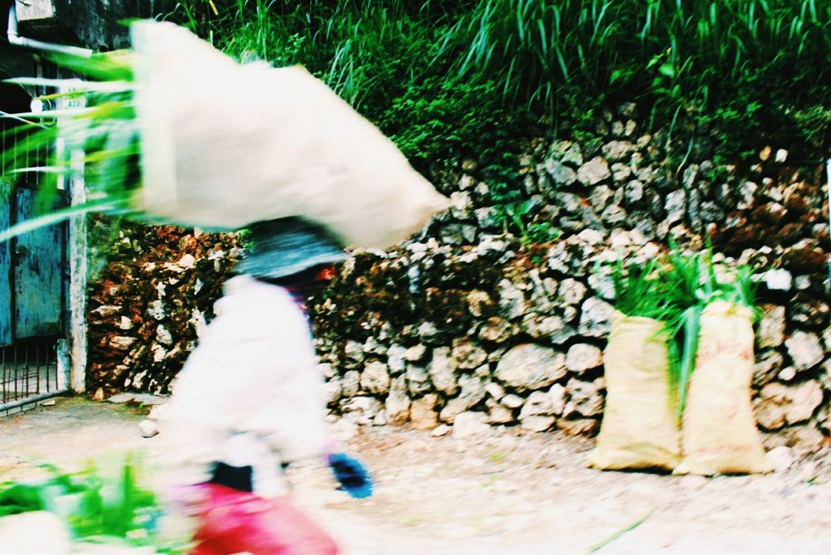 Filipino In Motion for Need For Speed ♠ Rural Life Filipino Igorot Baguio City Working Hard Hardworking People