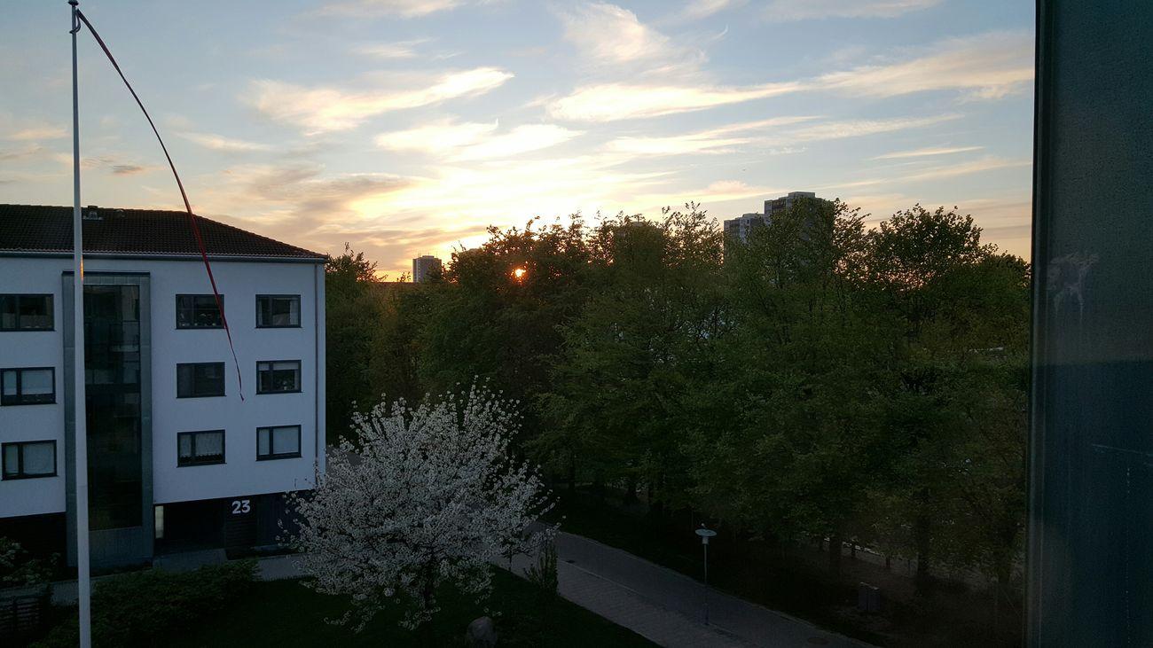 Sunset over Brøndby Strand