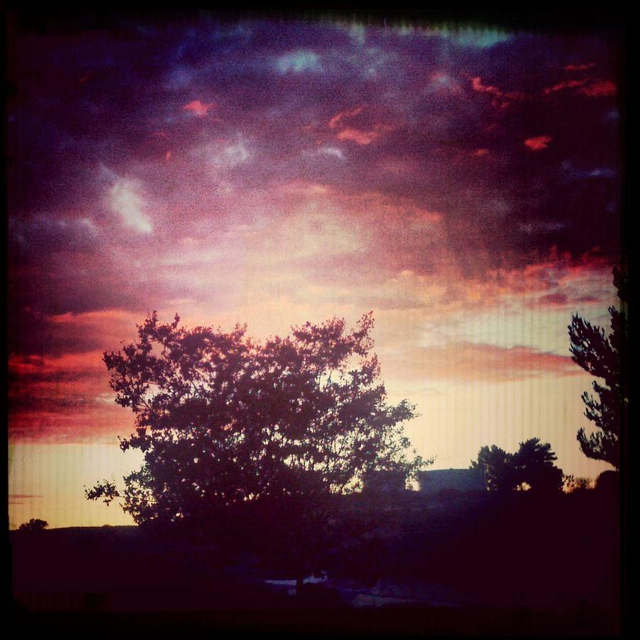 Beautifulsunsets Sunsets Skies Topangacanyonsunsets topangacanyon #sunsetskies #beautifulcolors
