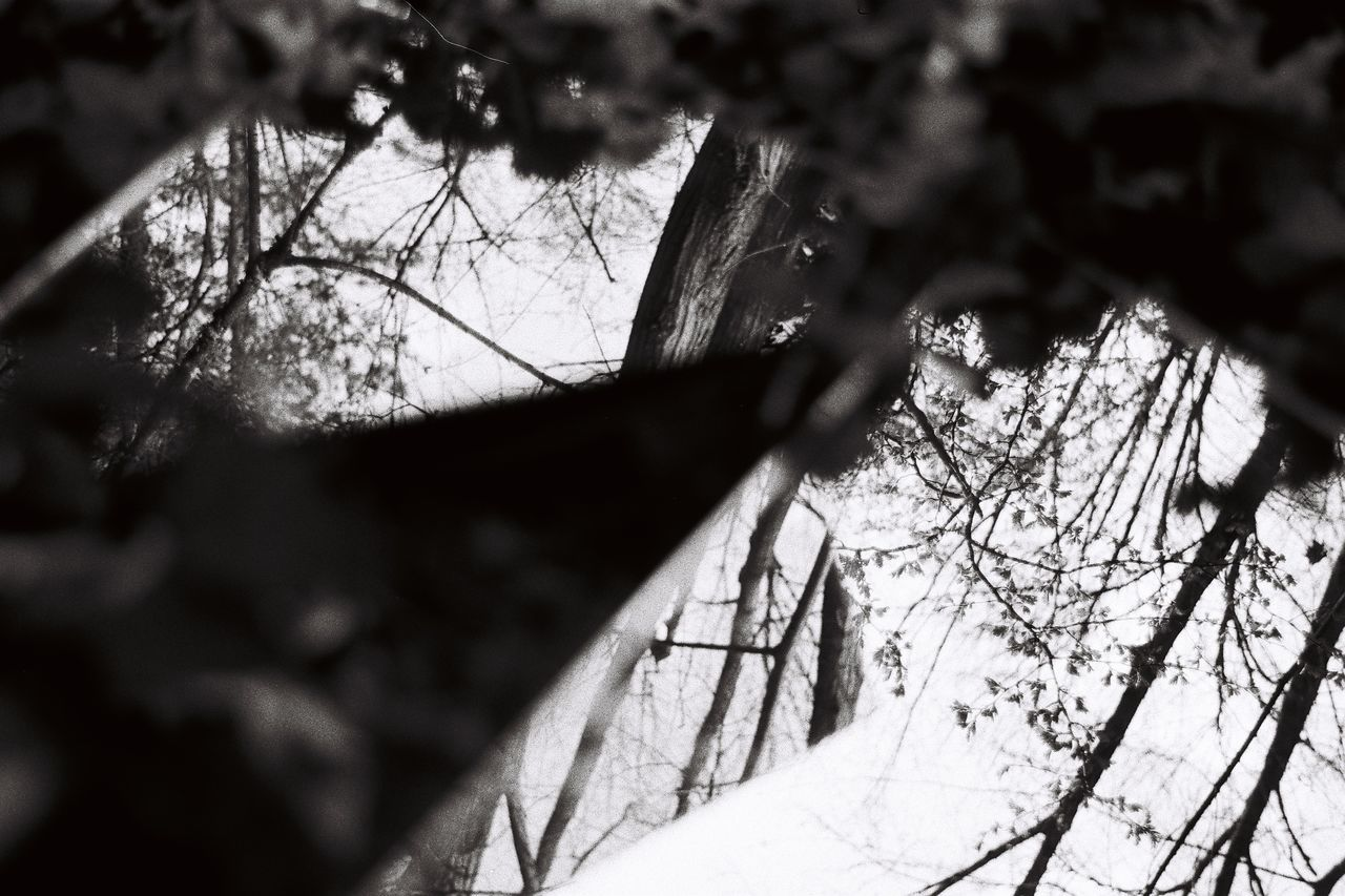 Blackandwhite Blackandwhite Photography Day Mirror Mirror Picture Mirror Reflection Mirrored Nature Nature_collection Naturelovers Outdoors Triagle
