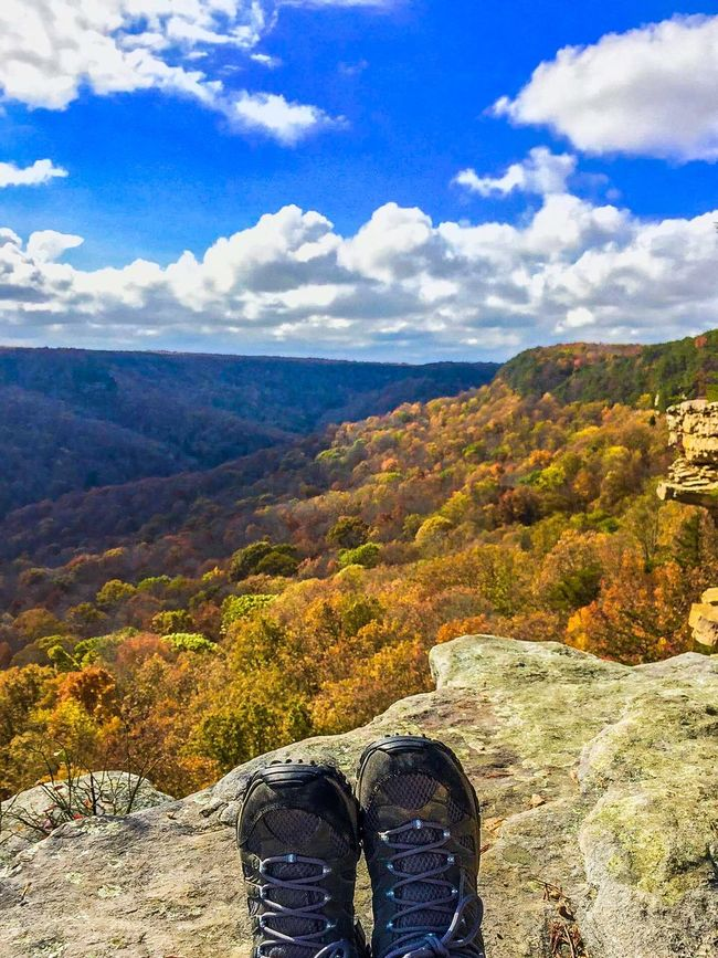 The Great Outdoors With Adobe Protecting Where We Play Eyemnaturelover Autumn Stonedoor Tennessee Nature Photography South Cumberland State Park Hiking The Great Outdoors - 2016 EyeEm Awards 43 Golden Moments