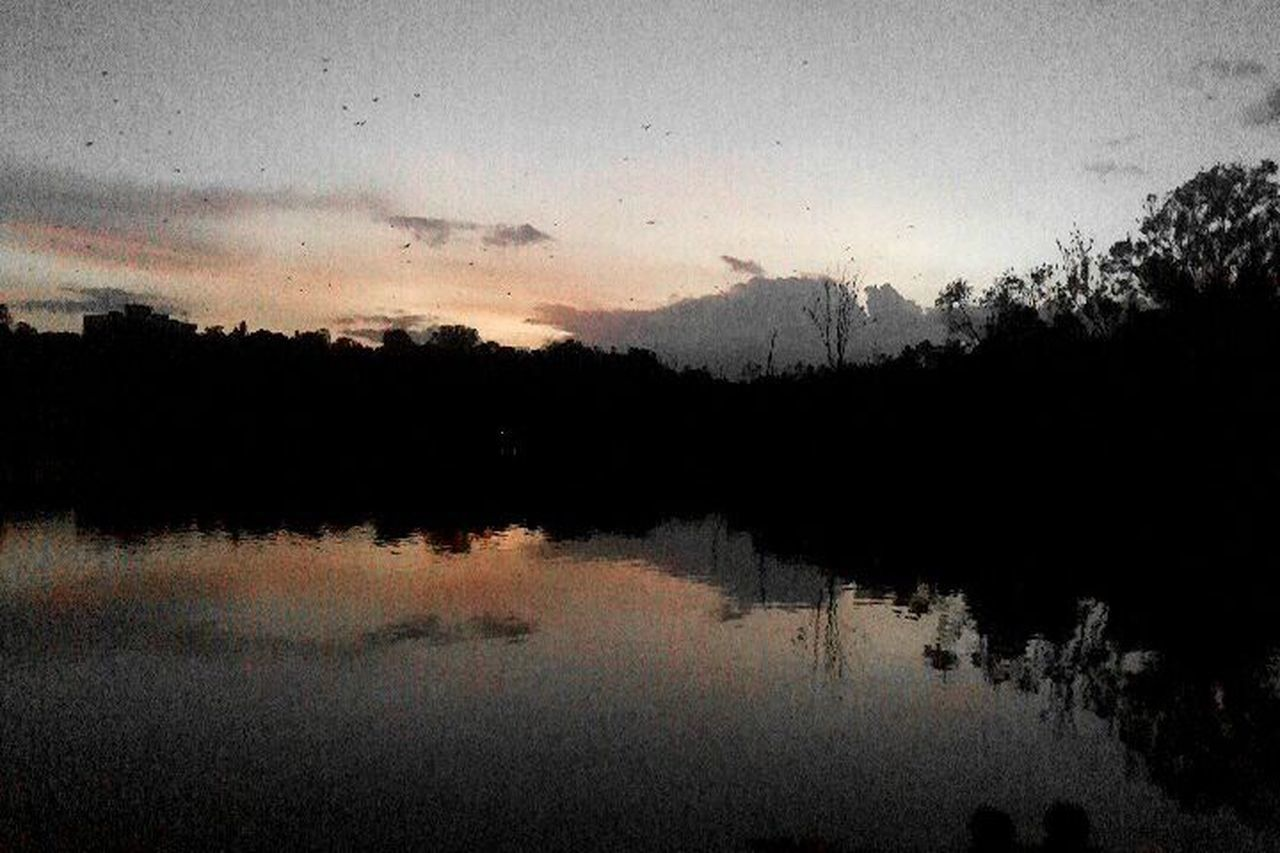 Sankey Lake Bangalore Nature At His Best Dusk Mobile Clicks Moto G3
