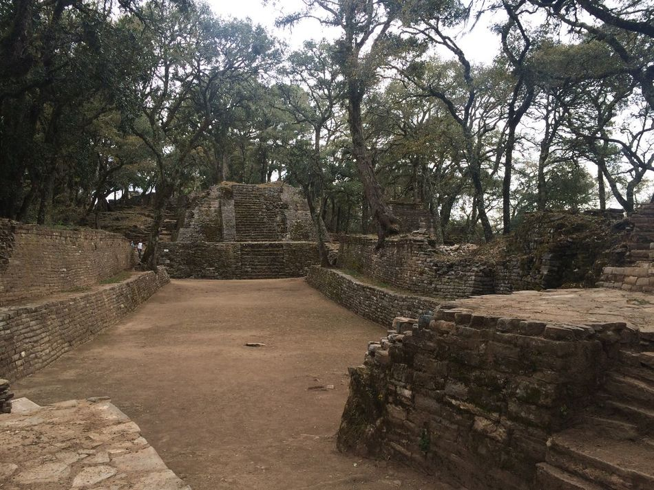 Ancient Architecture Built Structure Day Deterioration Growth History Nature No People Old Old Ruin Outdoors Pyramid Ruined Run-down Sierra Gorda, Queretaro Sky Stone Material The Past The Way Forward Toluquilla Tourism Tranquility Travel Destinations Tree