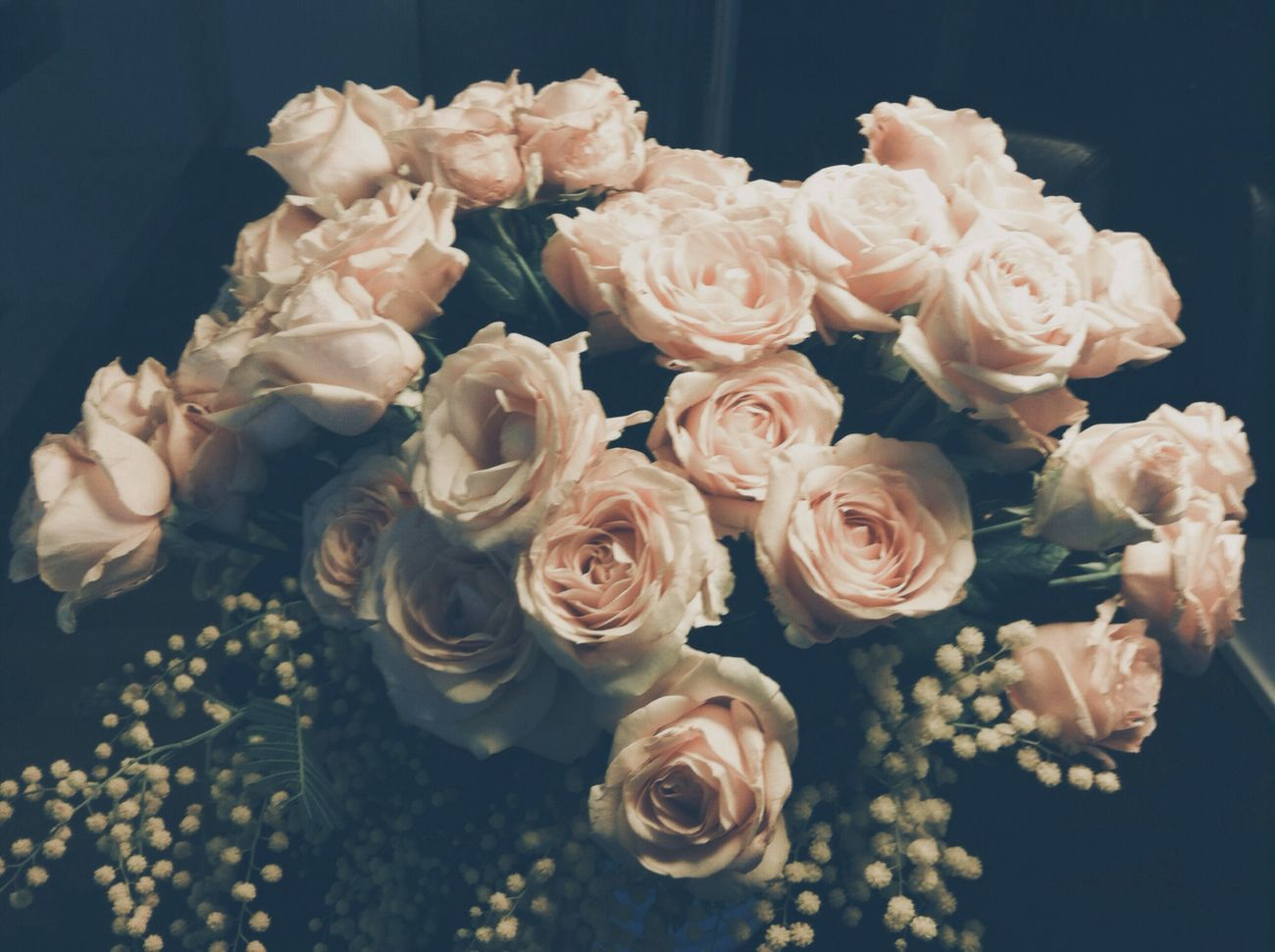 Beautiful stock photos of thank you, Bouquet, Close-Up, Elegance, Flower