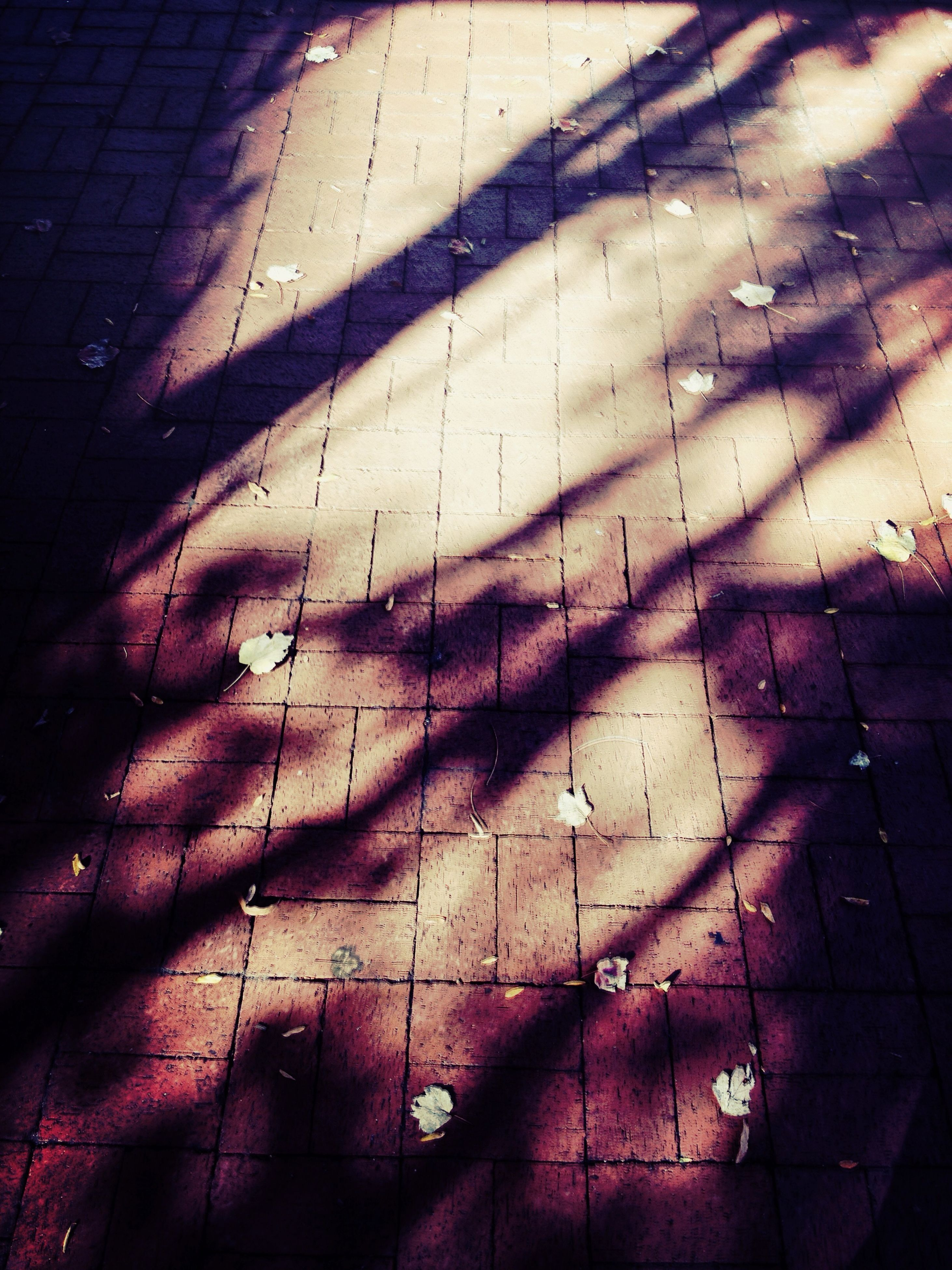 high angle view, shadow, wall - building feature, full frame, architecture, built structure, backgrounds, indoors, sunlight, building exterior, street, textured, no people, pattern, wall, day, brick wall, flooring, damaged