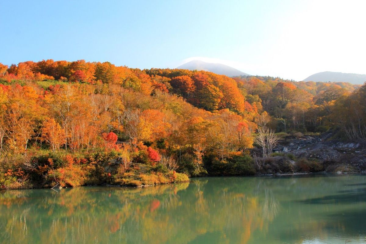 Water Tranquil Scene Autumn Tranquility Scenics Tree Lake Reflection Beauty In Nature Waterfront Change Clear Sky Nature Calm Idyllic Blue Countryside Day Orange Color Mountain