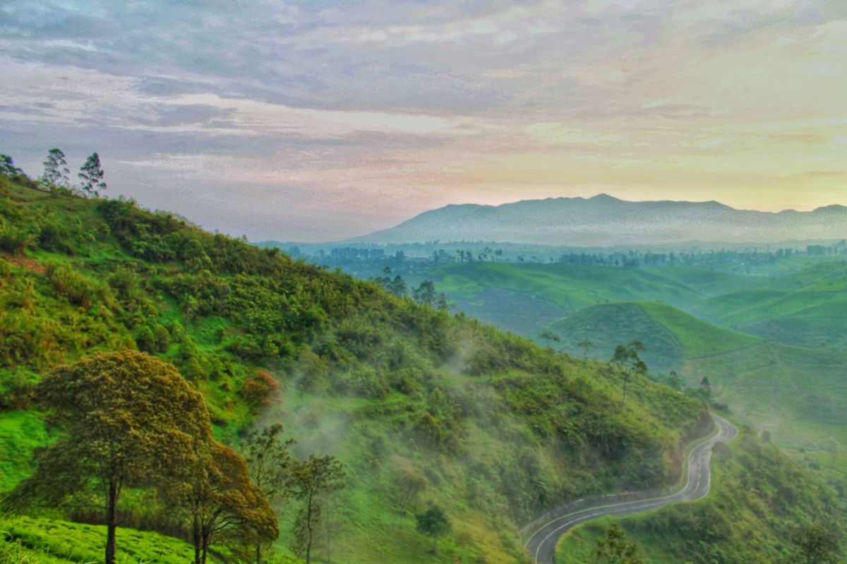 when the morning is so beautiful... Sunrise Landscape Mountain Field Tree Forest Agriculture Nature Green Color Beauty In Nature Outdoors
