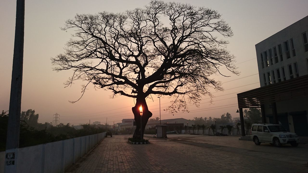 Architecture Bare Tree Beauty In Nature Branch City Day Nature One Person Outdoors People Real People Road Sky Sunset The City Light Tree